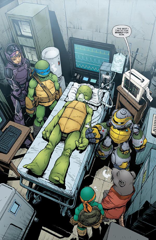 Teenage Mutant Ninja Turtles Comic Book